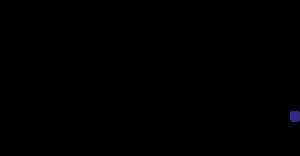 Rit Dye logo